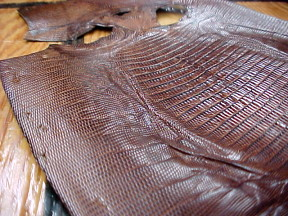 Brown Tejas Lizard Leather