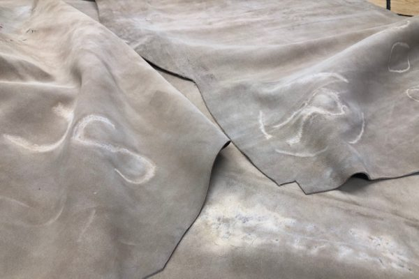 branded leather hides for sale