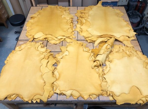 Gold sheep hides look like deer leather