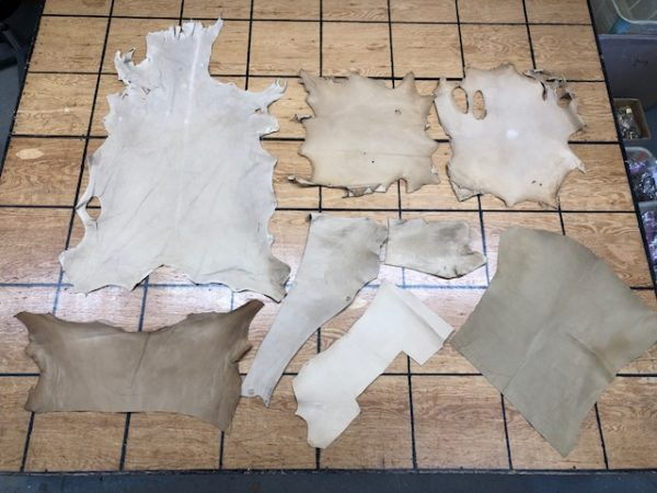 Collection of Vegetable Tanned Hides, Including a Couple of Alpaca Hides