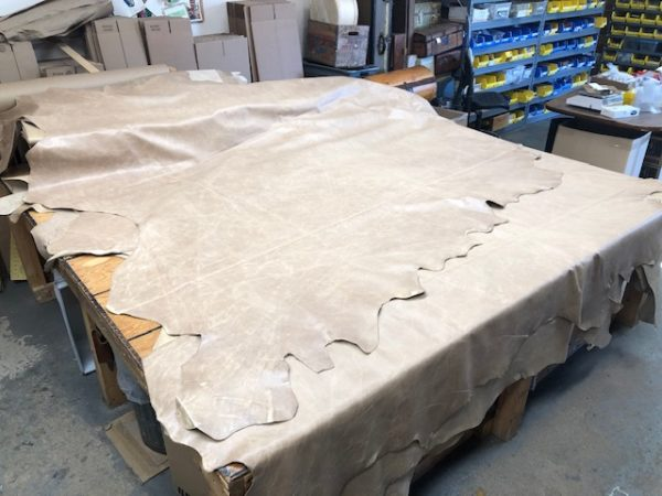 Very Large Chromium Tanned Leather Full Hides in Oatmeal Color over 60 Square Feet Each