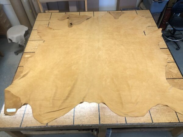 Beautiful LARGE Golden Tan Whole Hides are Thick but Very Soft and USA ships free!