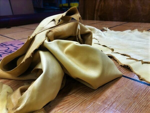 Buckskin Gold Sheep Hides are Soft and Look Like Smoke Tanned Deer Hide